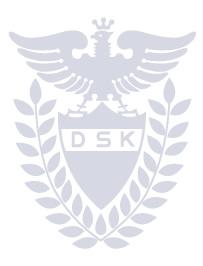 DSKロゴ